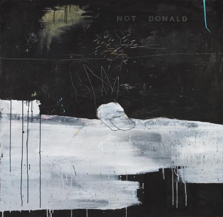 5-not-donald-bois-120-x-120-cm