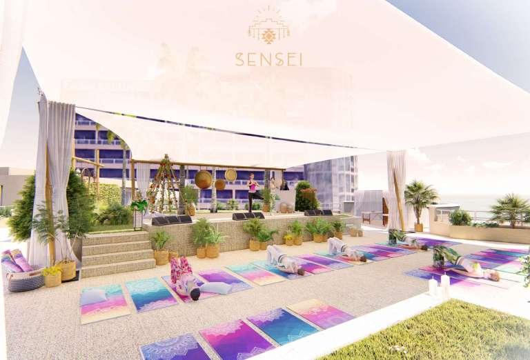 SENSEI-Presentation FR.jpg