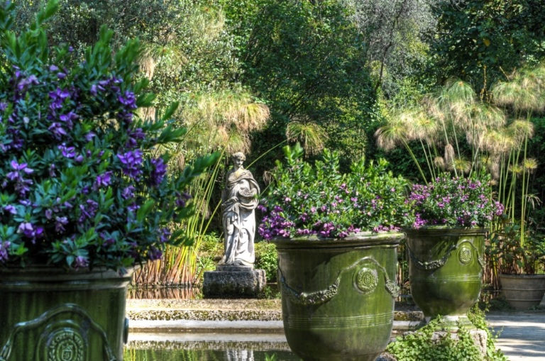 Jardin Serre de la Madone - Bassin 4