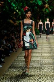 Dolce&Gabbana_Women's fashion show_SS20_Runway (15)